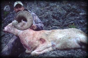 Jeremiah Lovelace of Casper, WY with his heavy Dall Ram
