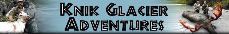 Knik Glacier Adventures - expertly guided hunts for Mountain Goats, Moose, Brown Bear, Black Bear, Dall Sheep, Wolves, Ibex