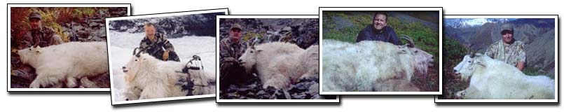 Knik Glacier Adventures - Hunting Mountain Goat