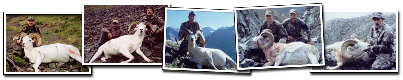 Knik Glacier Adventures - Hunting Dall Sheep